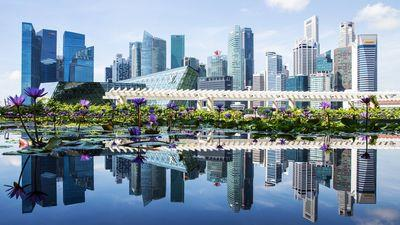 Singapore back on solid ground as prices pick up