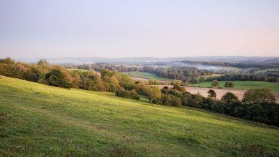 Five reasons to live in Guildford, Surrey