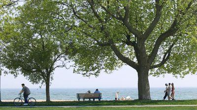 Five reasons to live in The Beaches, Toronto