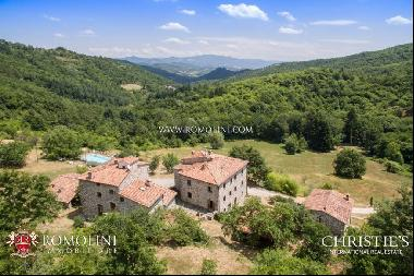 Tuscany - ORGANIC AGRITURISMO WITH POOL FOR SALE IN CAPRESE MICHELANGELO