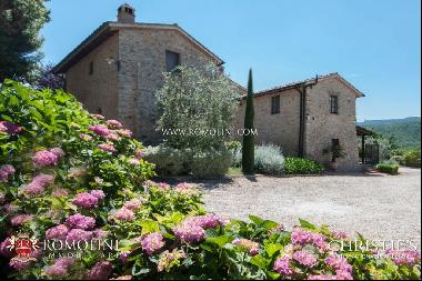 Tuscany - AGRITURISMO WITH PANORAMIC VIEW FOR SALE CASOLE D'ELSA