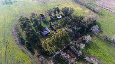 Fabulous farm in Buenos Aires
