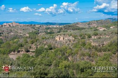 Tuscany - SIENA: FARMHOUSE WITH POOL AND PANORAMIC VIEW FOR SALE
