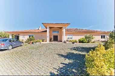 FARM with luxury house and vineyards
