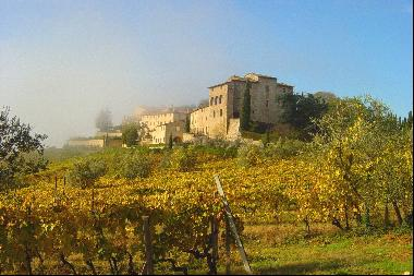 Historic castle with vineyard in 'Chianti'