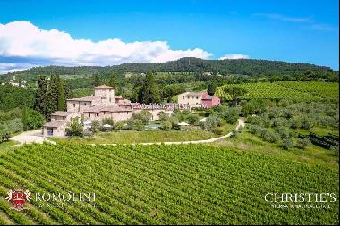 Chianti Classico - VINEYARDS AND WINERY FOR SALE 20 KM FROM FLORENCE