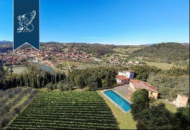 Luxury villa with small castle and olive grove for sale near Florence