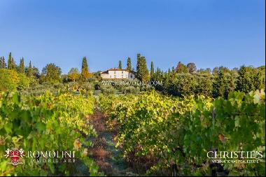 Tuscany - SMALL ESTATE FOR SALE 30 MINUTES FROM FLORENCE