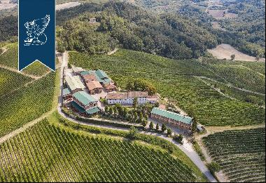Luxury property with huge grounds, vineyards and a hunting reserve in Pavia