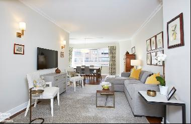 20 SUTTON PLACE SOUTH 17B in New York, New York