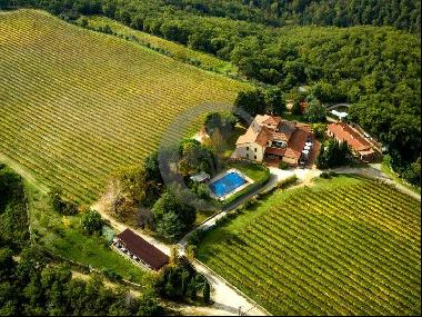 Ref. 5563 Winery in Gaiole in Chianti