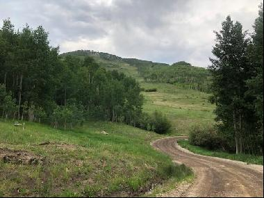 1528956 square feet Land in Placerville, Colorado