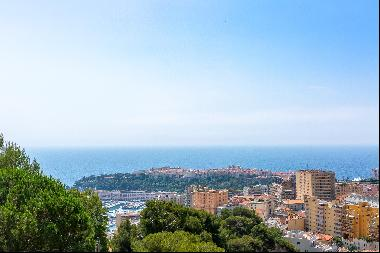 Magnificent Penthouse with panoramic sea and Monaco views