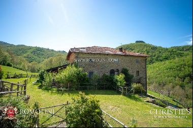 Tuscany - RESTORED COUNTRY HOUSE FOR SALE IN TUSCANY, FORESTE CASENTINESI NATIONAL PARK