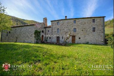 Emilia-Romagna - RURAL PROPERTY WITH 10th-CENTURY CHURCH FOR SALE IN CASTELDELCI