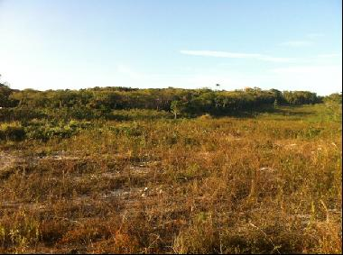 Large vacant land in the west