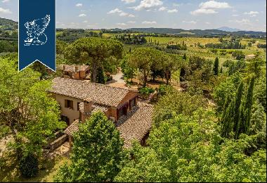 Luxurious panoramic villa with vineyard and olive grove in the heart of Tuscany