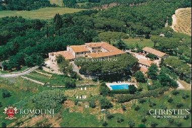 Tuscany - BUILDING PLOT WITH COUNTRY HOUSE, OLIVE GROVE, VINEYARD IN MAREMMA