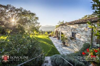 Florence - ORGANIC FARM WITH AGRITURISMO FOR SALE IN FIESOLE